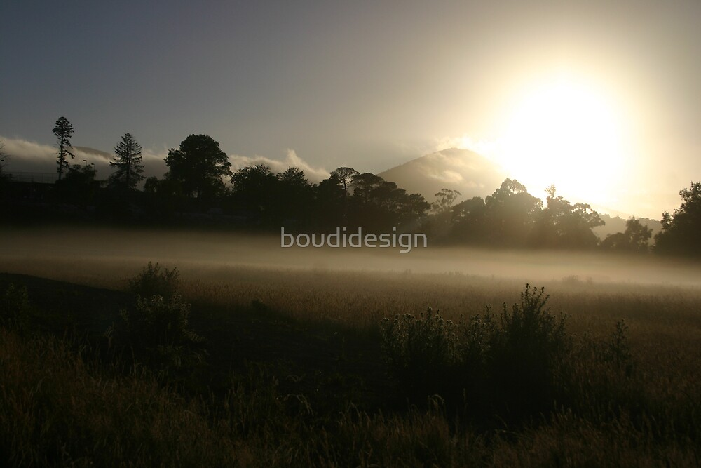 Misty morning in Healesville by boudidesign