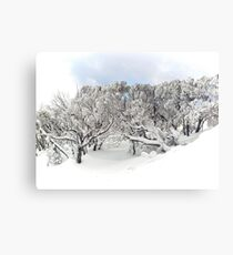 Thinking about the Snow (and how to get back there!) Canvas Print
