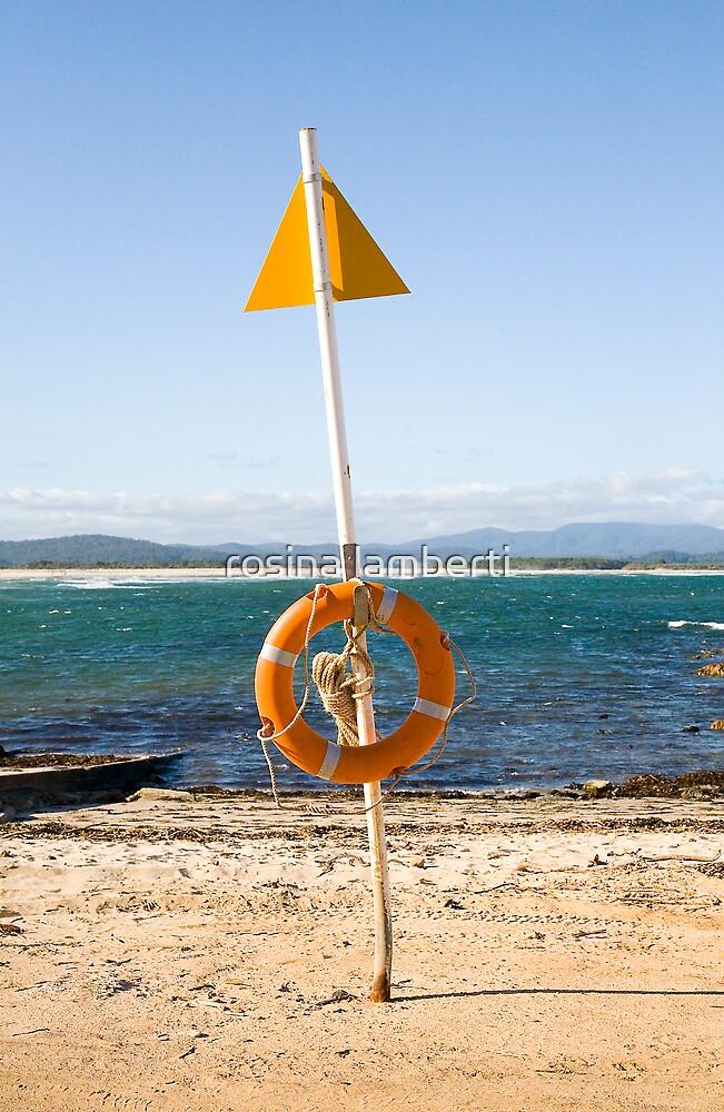 Twofold Bay by Rosina  Lamberti
