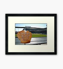 Watch Out for Flying Objects Framed Print