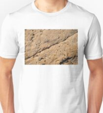 Fascinating Fossils Take One Unisex T-Shirt