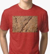 Fascinating Fossils Take Two Tri-blend T-Shirt