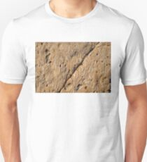 Fascinating Fossils Take Two Unisex T-Shirt