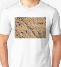 Fascinating Fossils Take Three Unisex T-Shirt