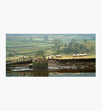Reeth Swingbridge, Swaledale, 2001 Photographic Print
