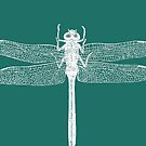 Dragonfly (Aqua) by MissElaineous Designs