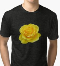 Beautiful Yellow Rose Closeup Isolated On White Tri-blend T-Shirt