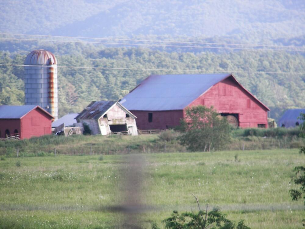 Farm House by Kelli Short