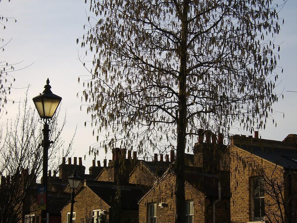 Raining leaves and chimneys by James  Dedman