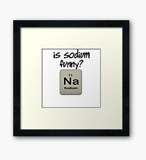 IS SODIUM FUNNY? Na Framed Print