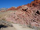 Red Rocks by Cathy Jones