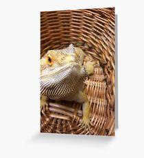Bearded basket Greeting Card