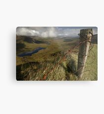 Rusty old fence at the Conor Pass Metal Print