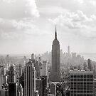 New York City by Paula Bielnicka