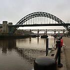 Bridges over the River Tyne by Lynn Bolt
