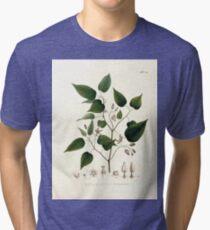 Nova genera et species plantarum V1 V3 Plates Karl Friedrich Philipp von Martius 1834 233 Tri-blend T-Shirt