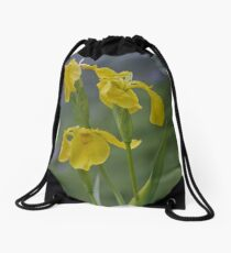 Yellow Flag Iris - Donegal Drawstring Bag