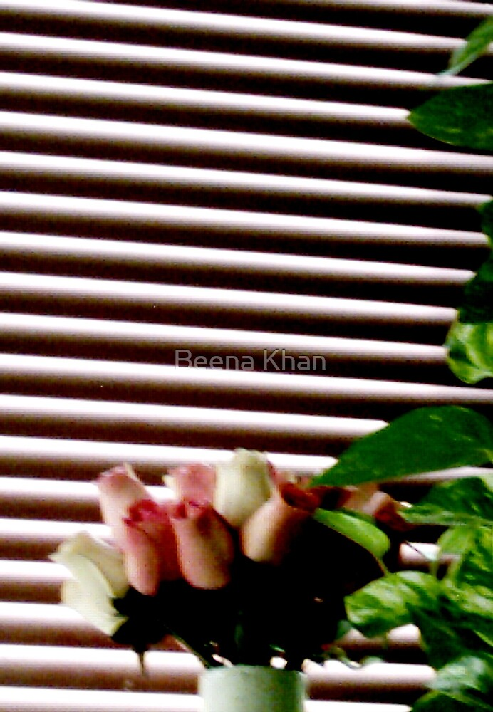 Rose Buds by Beena Khan