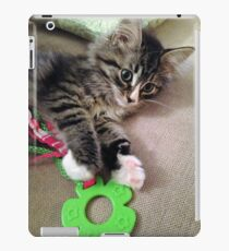 Precious Kitten iPad Case/Skin