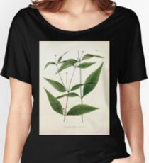 Nova genera et species plantarum V1 V3 Plates Karl Friedrich Philipp von Martius 1834 129 Women's Relaxed Fit T-Shirt