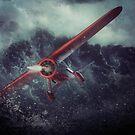 Amelia Earhart by Richard Davis