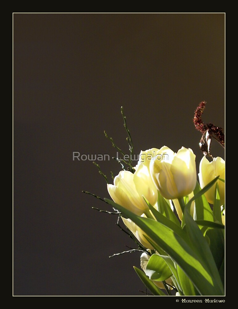 Blooming in the Light by Rowan  Lewgalon