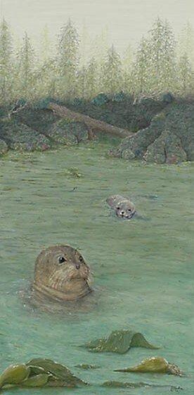 Harbor Seals- Alberni Inlet by jkarlin