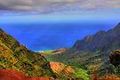Kalalau Valley by DJ Florek