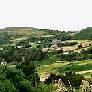 Rolling Irish Hills - Donegal, Ireland by Shulie1