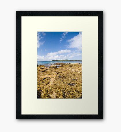 Murrays Beach Framed Print
