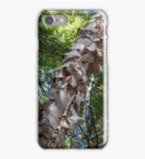 Fabulous Birch iPhone Case/Skin