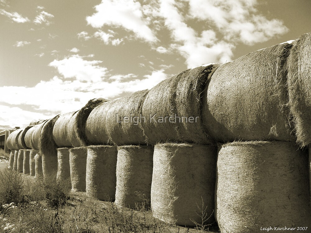 BALES OF WINTER by Leigh Karchner