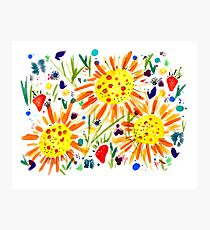 Bright and cheerful summer garden Photographic Print