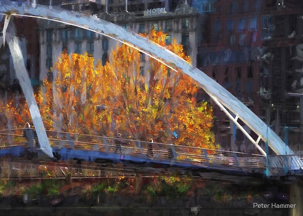 Southgate Bridge by Peter Hammer
