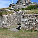 Castle from the Bunkers by kalaryder