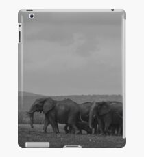 Elephants (Loxodonta) iPad Case/Skin