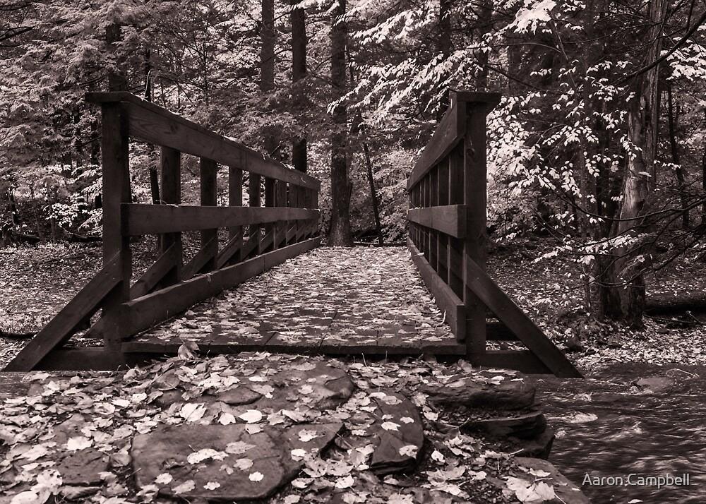 Kitchen Creek Footbridge by Aaron Campbell