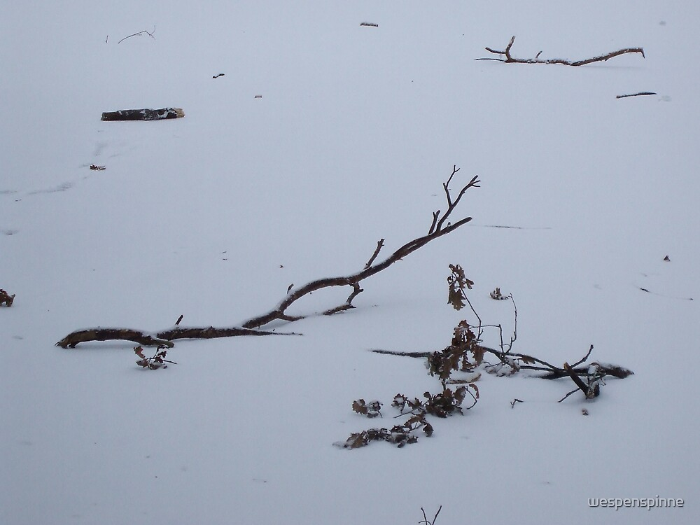 branch on the frozen lake 2 by wespenspinne