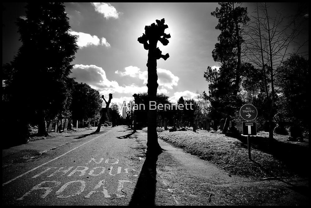 Earlham Cemetery by Alan Bennett