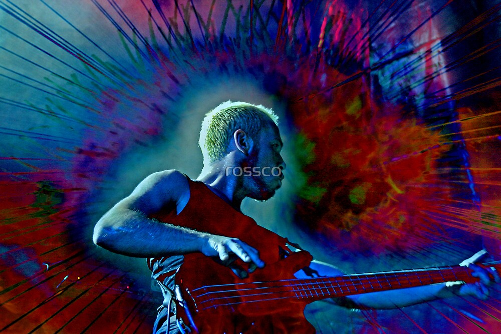The Bass Player by rossco