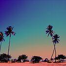Five Palms by Glenn Browning