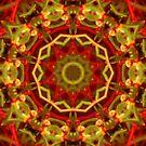 Autumn Mandala by Maryanne Lawrence