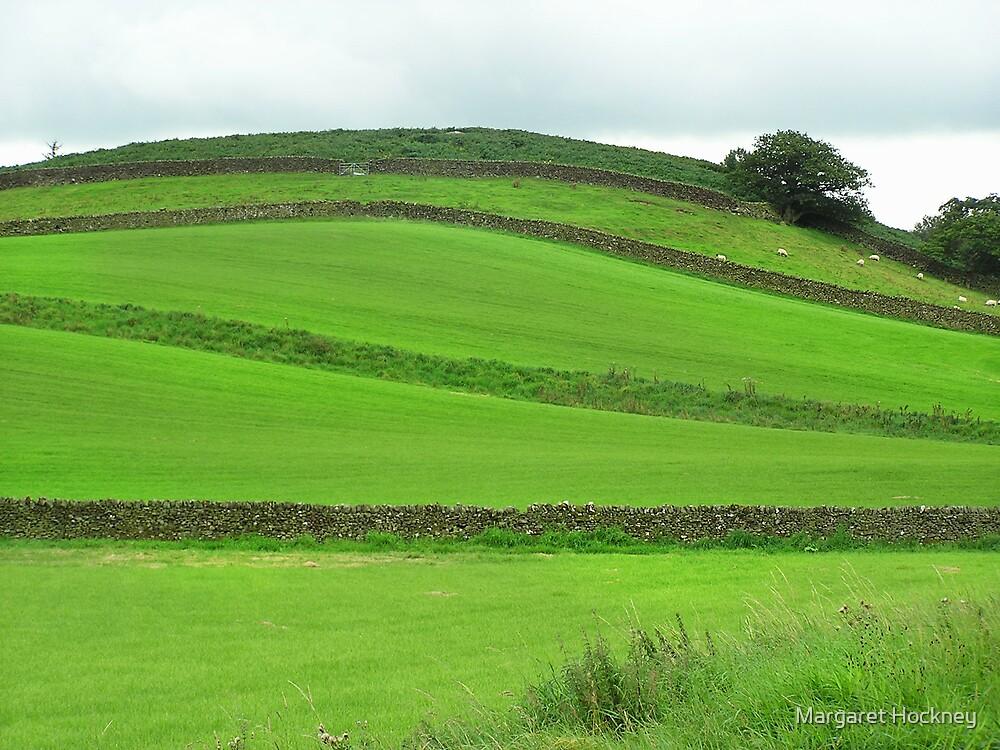Green shapes in Yorkshire Dales by Margaret Hockney
