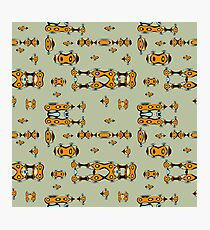 beetle frogger Photographic Print