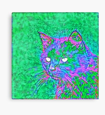 Ninja Cat, Predator Canvas Print