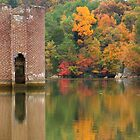 Fall on Tellico by Douglas  Stucky