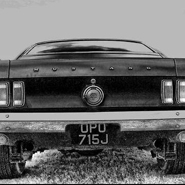 Crazy Horses by Vampire