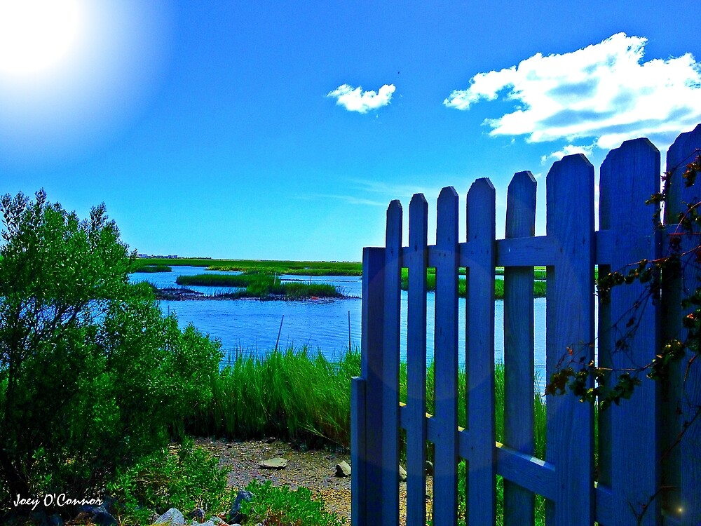 Fence Opens Up To Inlet by Joey O'Connor