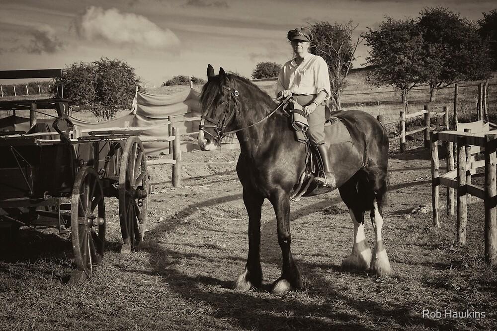 War Horse  by Rob Hawkins
