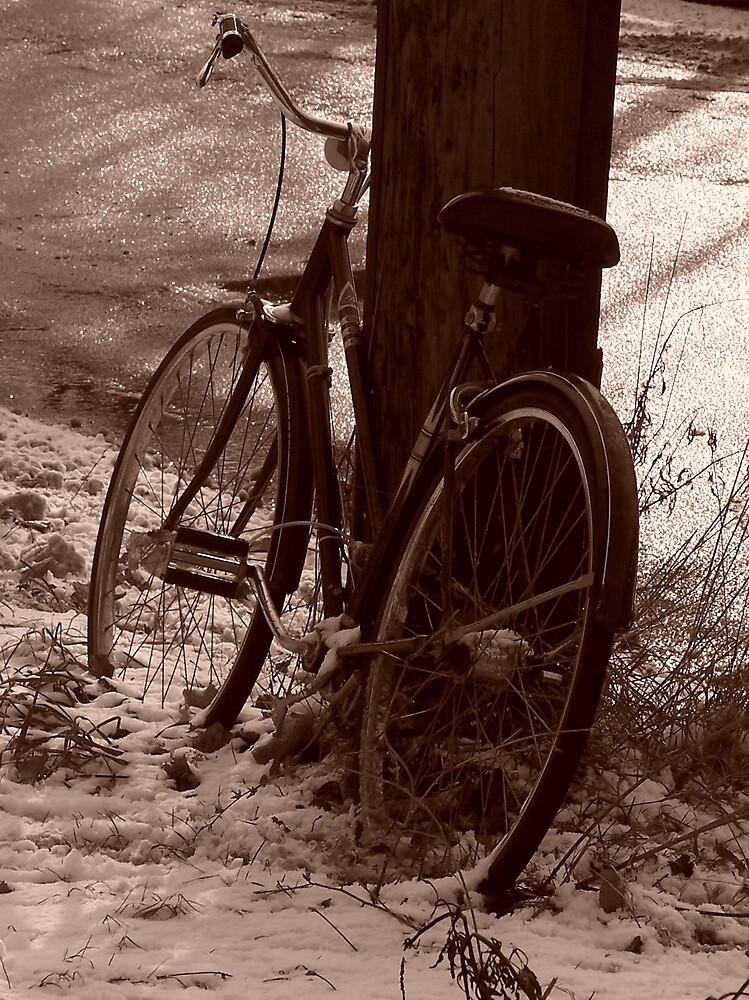 Bike by Emma and Dave Atkinson